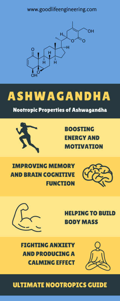 Nootropics Ultimate Guide - Memory Supplements - Goodlife Engineering - Ashwagandha